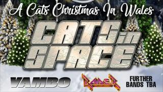 A Cats Christmas In Wales: Cats In Space + Support